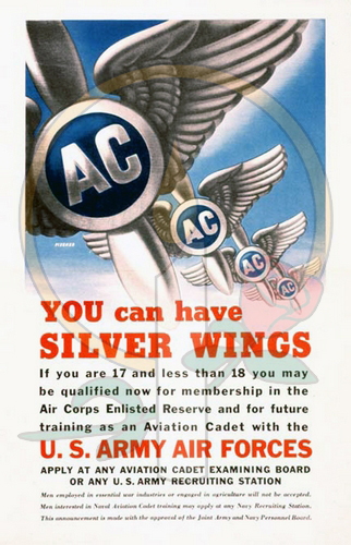 You Can Have Silver Wings