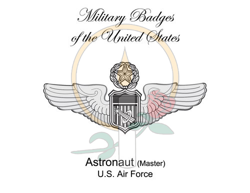 Badge Card, Astronaut (Master)