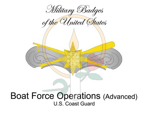 Badge Card, Boat Force Operations (Advanced)