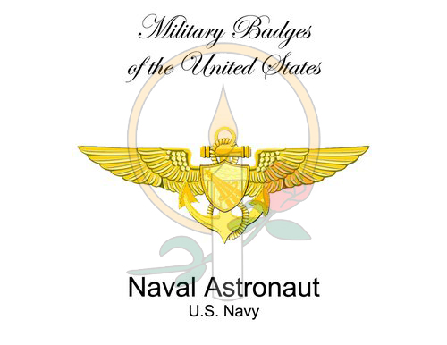 Badge Card, Naval Astronaut