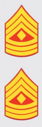 E-8 1st Sgt. Mini Decal (2 pc)