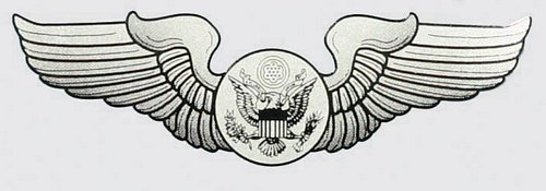 USAF Aircrew (enlisted) Wings Decal