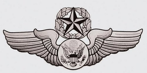 USAF Chief Aircrew (enlisted) Wings Decal