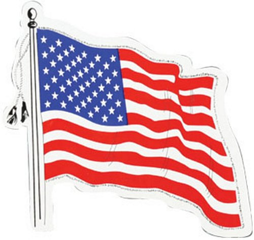 USA Wavy Flag Magnet