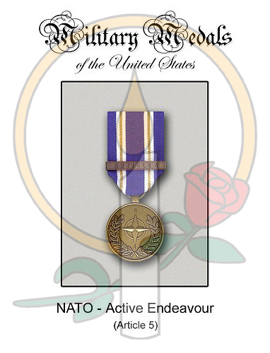 Medal Card, NATO Active Endeavour