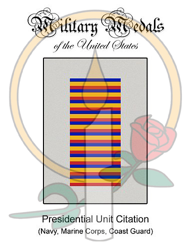 Medal Card, Presidential Unit Citation (Navy-MC-CG