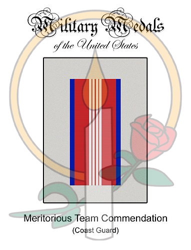 Medal Card, Meritorious Team Commendation, MilitaryWives com